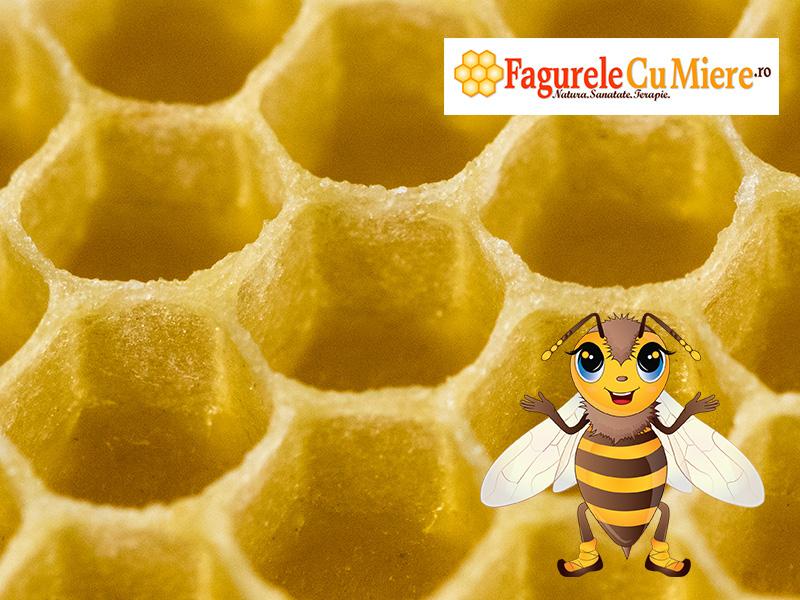 Fagurele gol in care albinutele vor aduna mierea