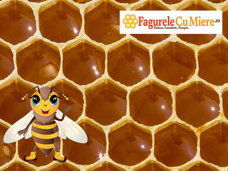 Fagure plin cu miere de albine
