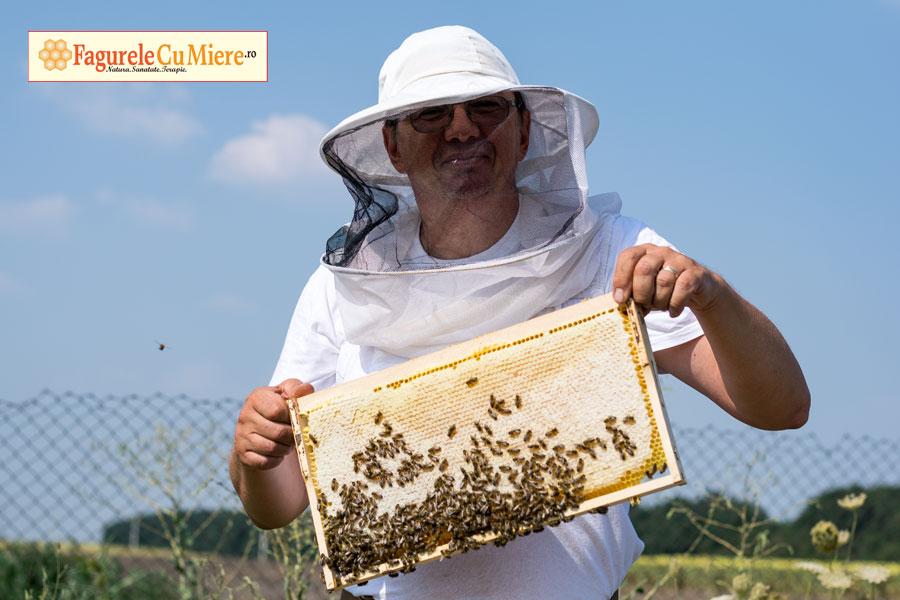 Miere crudă, miere vie, miere raw?