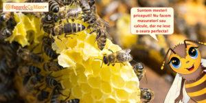 Lumanarile din ceara de albine salveaza situatia