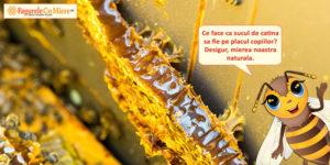 Siropul de catina cu miere nepasteurizat